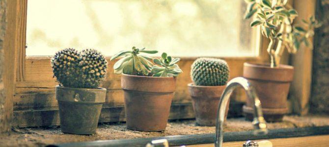 6 astuces de grand-mère pour déboucher votre évier